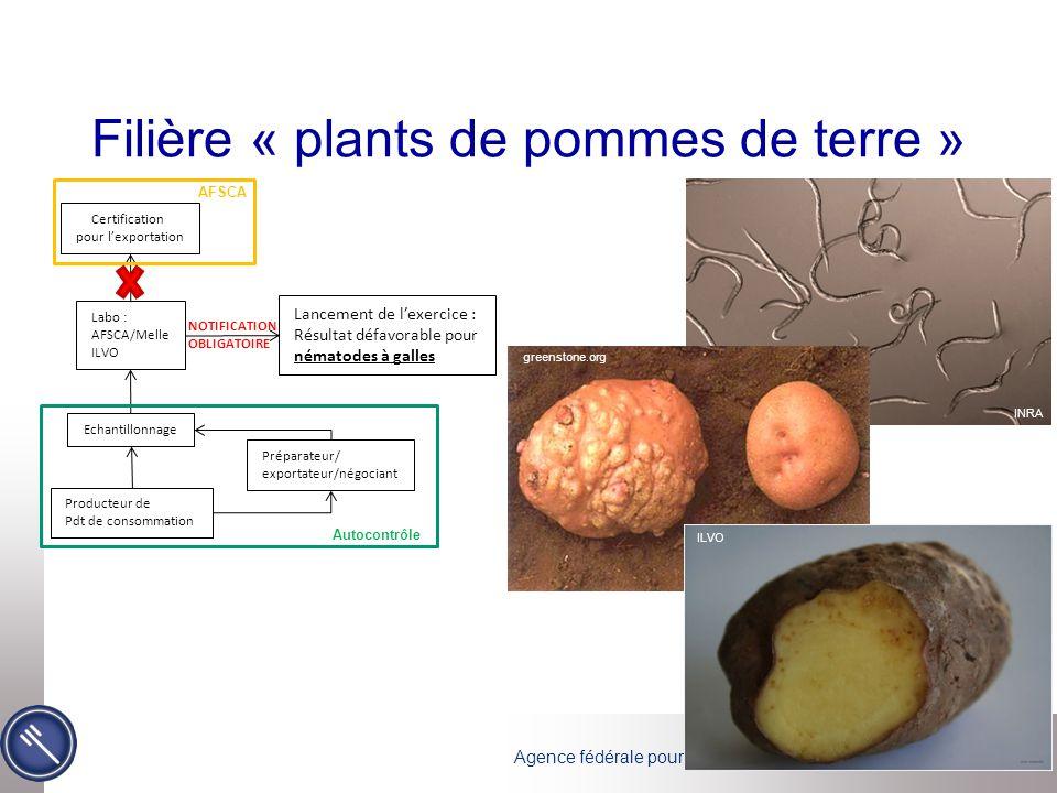 Agence fédérale pour la Sécurité de la Chaîne alimentaire Filière « plants de pommes de terre » NOTIFICATION OBLIGATOIRE Lancement de l'exercice : Rés
