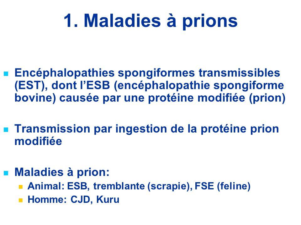1. Maladies à prions Encéphalopathies spongiformes transmissibles (EST), dont l'ESB (encéphalopathie spongiforme bovine) causée par une protéine modif