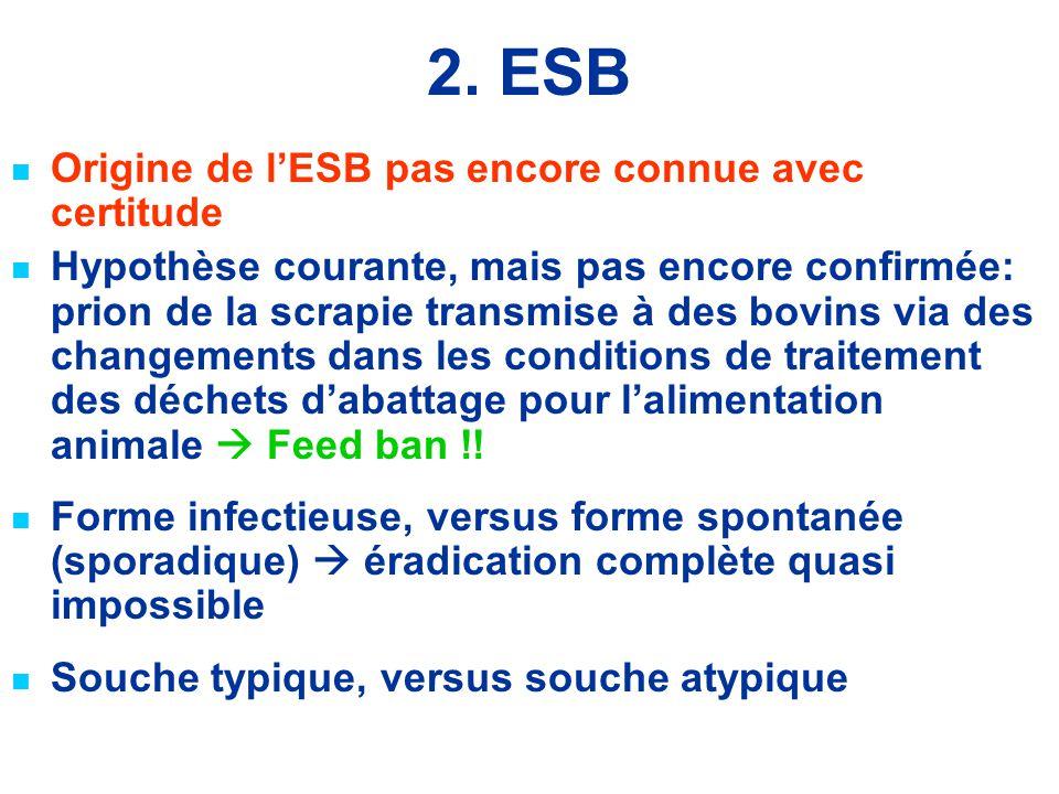 2. ESB Origine de l'ESB pas encore connue avec certitude Hypothèse courante, mais pas encore confirmée: prion de la scrapie transmise à des bovins via