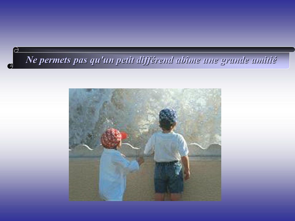 Ne permets pas qu'un petit différend abîme une grande amitié