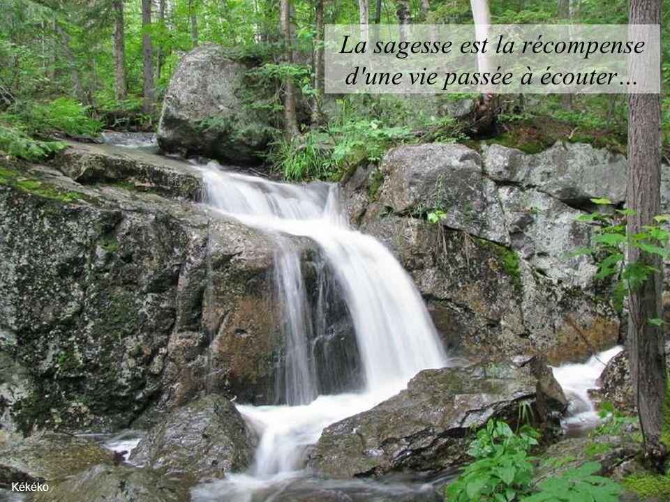 Si des embûches se dressent sur votre chemin changez de direction, mais non de destination… Lac Olivier