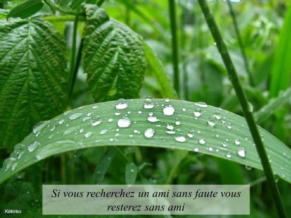 Que chaque jour soit un nouveau départ et pardonnez-vous pour hier… Mont Chaudron