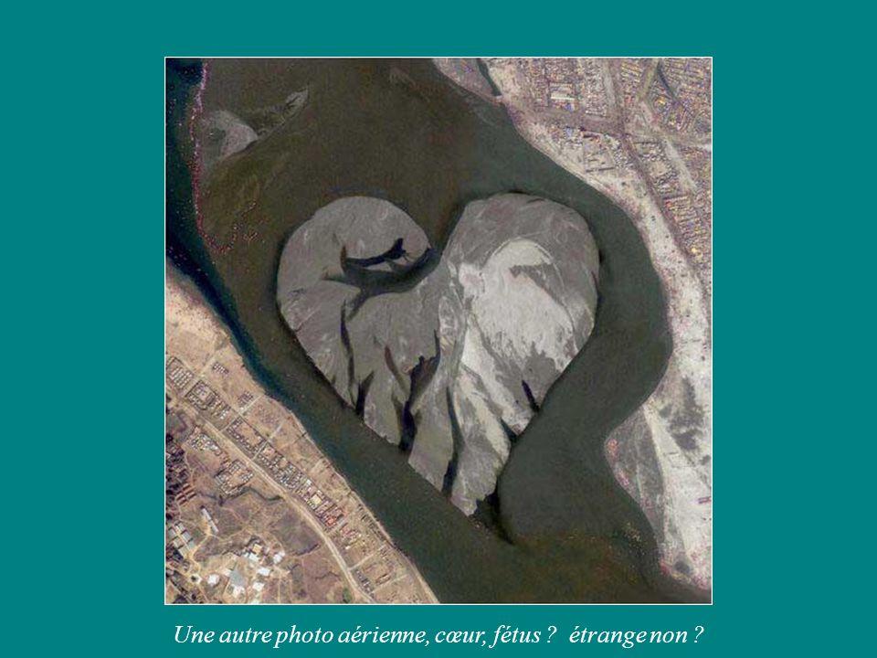 Une autre photo aérienne, cœur, fétus ? étrange non ?