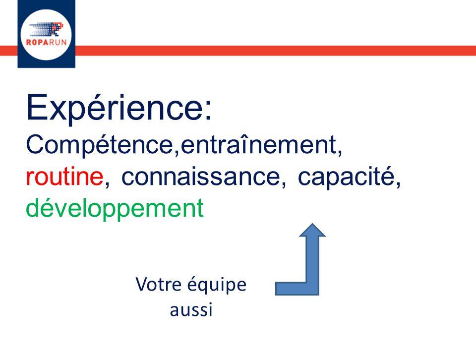 Expérience: Compétence,entraînement, routine, connaissance, capacité, développement Votre équipe aussi