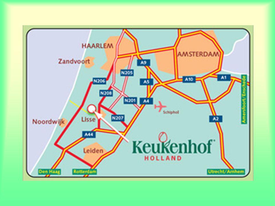 Bienvenue au Keukenhof Keukenhof vit au rythme des bulbes de printemps. Le nom est éloquent : ces bulbes fleurissent au printemps. Par conséquent, Keu