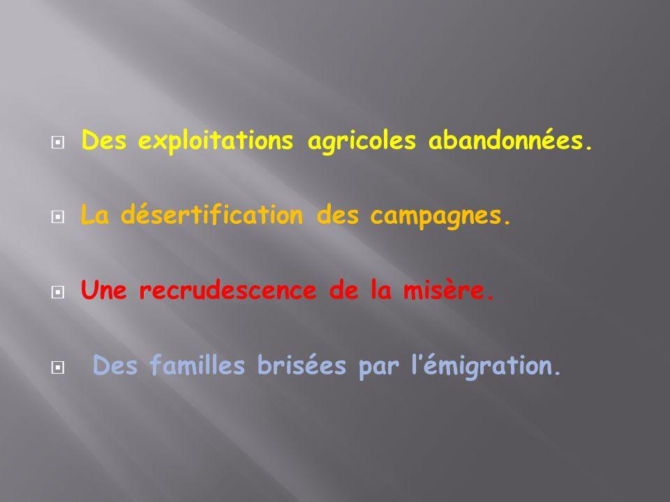  Des exploitations agricoles abandonnées.  La désertification des campagnes.  Une recrudescence de la misère.  Des familles brisées par l'émigrati