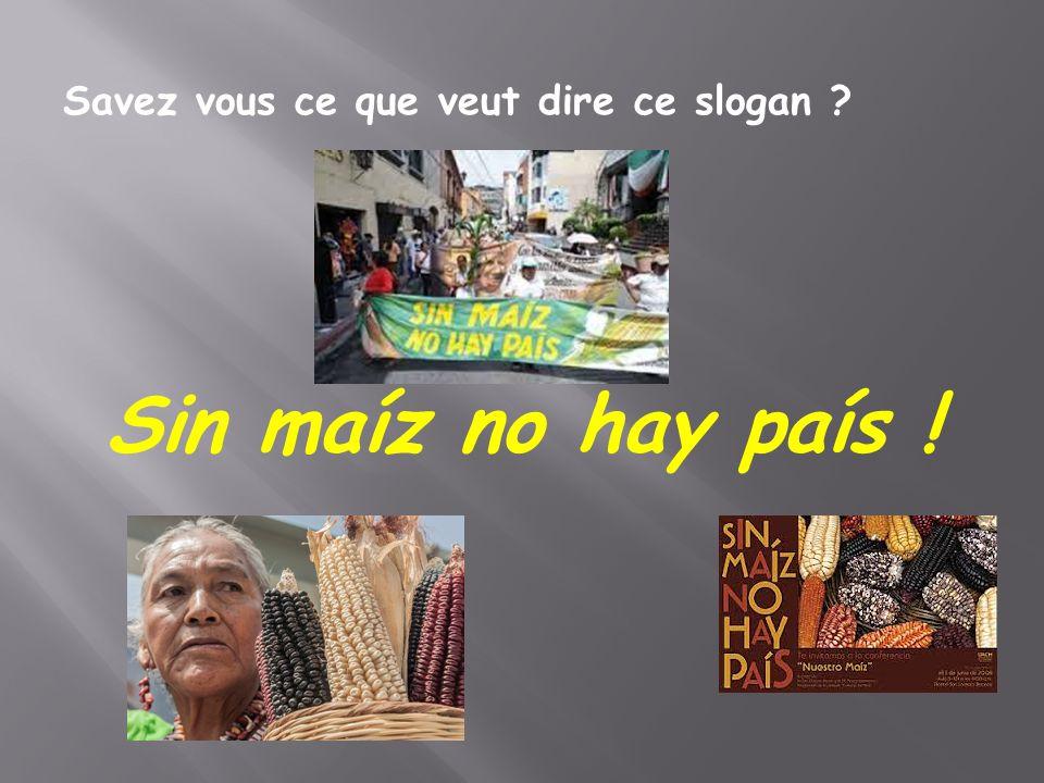 Savez vous ce que veut dire ce slogan ? Sin maíz no hay país !
