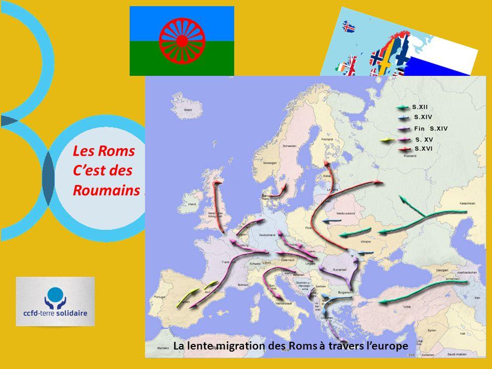 Les Roms C'est des Roumains ! Vrai? Faux? FAUX! Rom (ou Rrom) est un terme qui a été adopté par l'Union romani internationale (IRU) pour désigner un e
