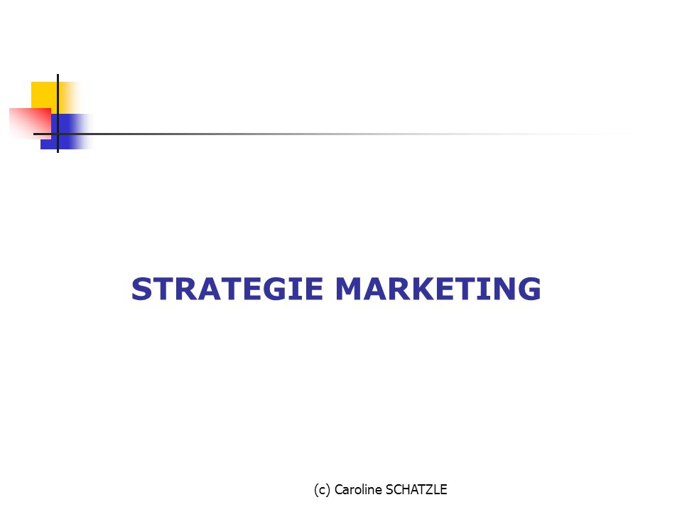 (c) Caroline SCHATZLE STRATEGIE MARKETING