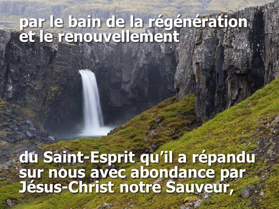 par le bain de la régénération et le renouvellement du Saint-Esprit qu'il a répandu sur nous avec abondance par Jésus-Christ notre Sauveur, par le bain de la régénération et le renouvellement du Saint-Esprit qu'il a répandu sur nous avec abondance par Jésus-Christ notre Sauveur,