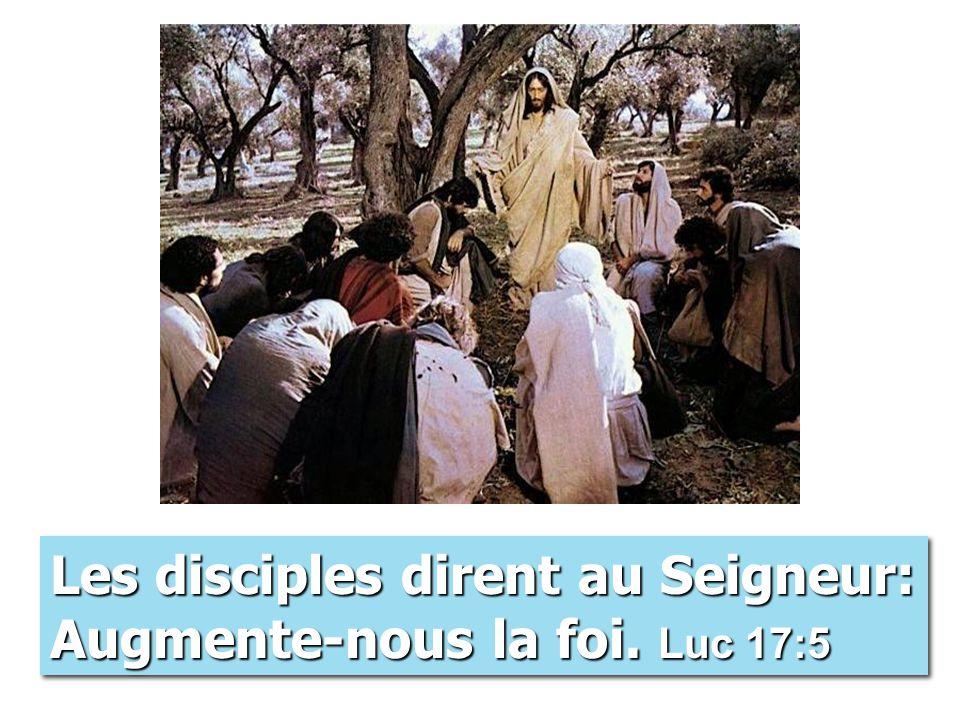 Les disciples dirent au Seigneur: Augmente-nous la foi. Luc 17:5