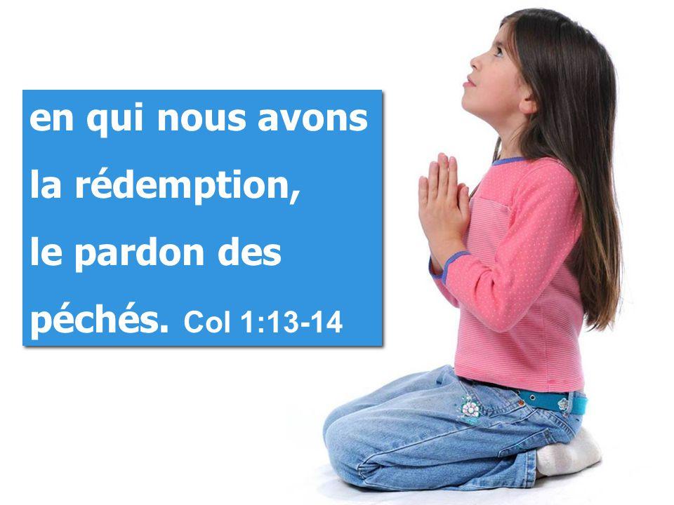 en qui nous avons la rédemption, le pardon des péchés.