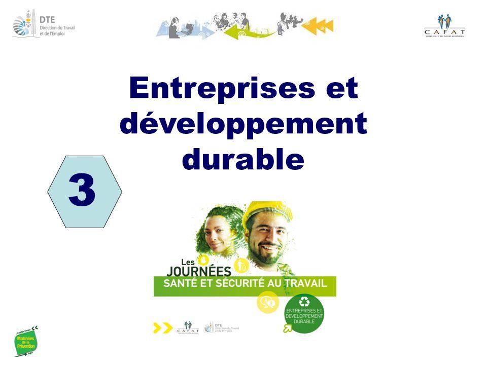 3 Entreprises et développement durable