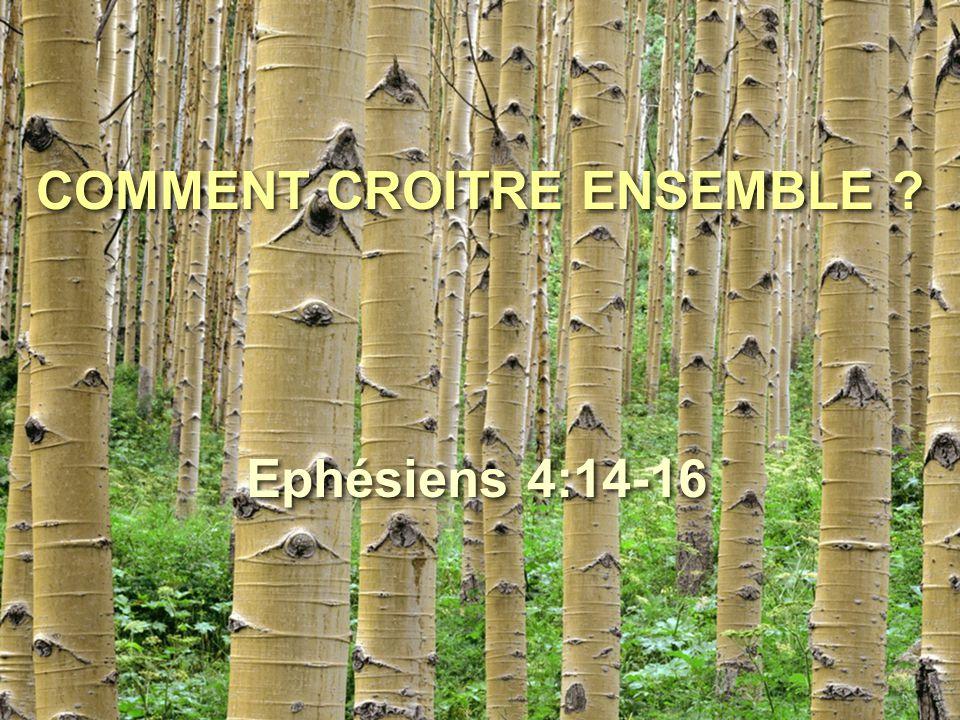 COMMENT CROITRE ENSEMBLE ? Ephésiens 4:14-16