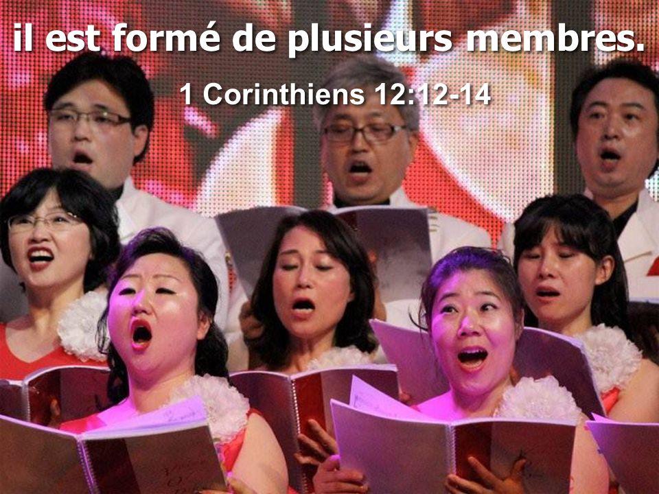 il est formé de plusieurs membres. 1 Corinthiens 12:12-14 il est formé de plusieurs membres. 1 Corinthiens 12:12-14