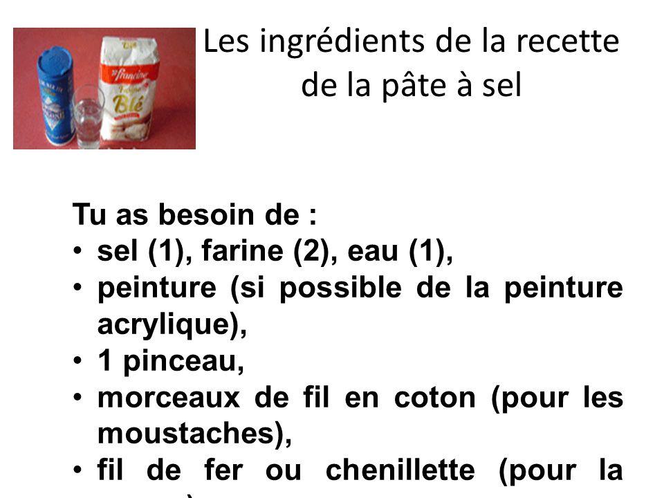 Les ingrédients de la recette de la pâte à sel Tu as besoin de : sel (1), farine (2), eau (1), peinture (si possible de la peinture acrylique), 1 pinceau, morceaux de fil en coton (pour les moustaches), fil de fer ou chenillette (pour la queue).