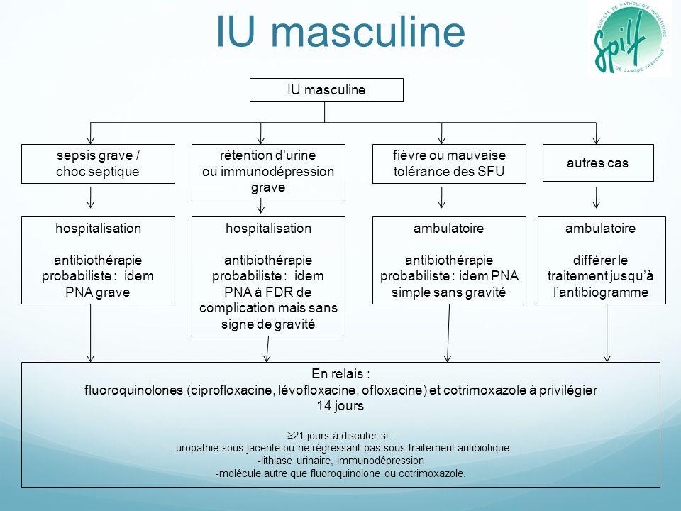 IU masculine sepsis grave / choc septique hospitalisation antibiothérapie probabiliste : idem PNA grave rétention d'urine ou immunodépression grave ho