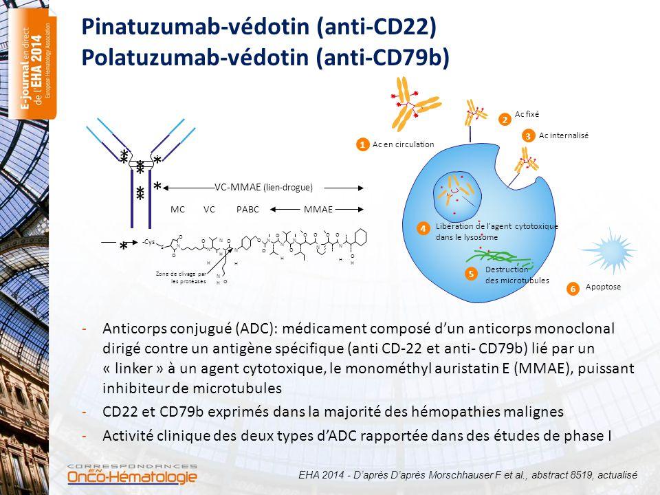 - Anticorps conjugué (ADC): médicament composé d'un anticorps monoclonal dirigé contre un antigène spécifique (anti CD-22 et anti- CD79b) lié par un «