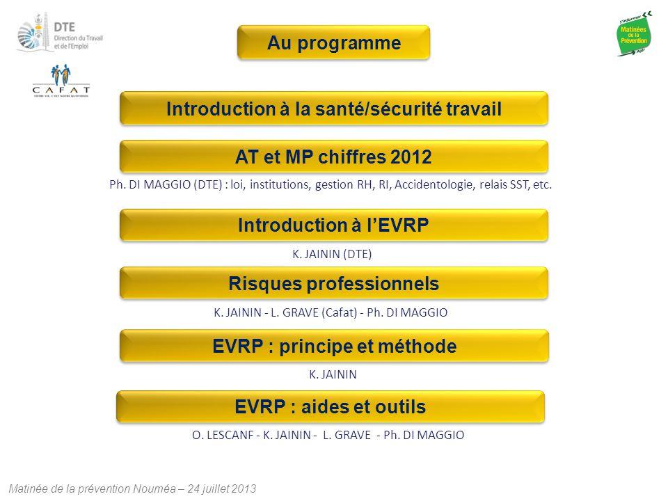 Matinée de la prévention Nouméa – 24 juillet 2013 Ph. DI MAGGIO (DTE) : loi, institutions, gestion RH, RI, Accidentologie, relais SST, etc. EVRP : aid