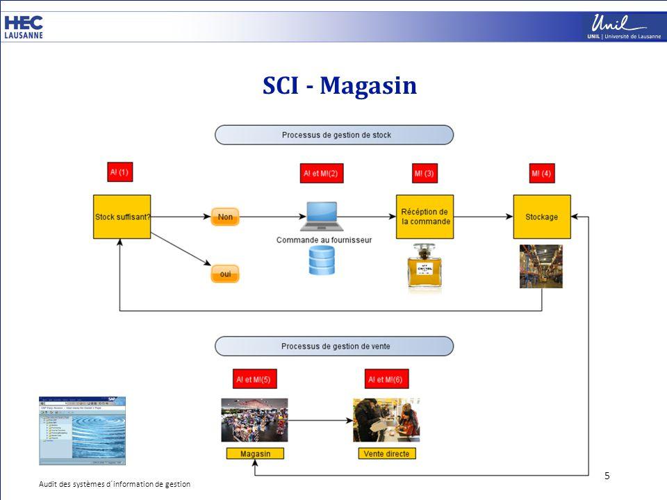 SCI - Magasin 5 Audit des systèmes d´information de gestion