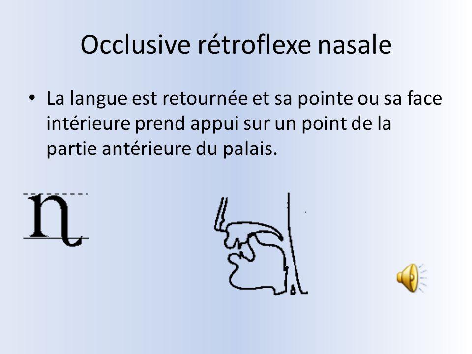 Occlusive rétroflexe nasale La langue est retournée et sa pointe ou sa face intérieure prend appui sur un point de la partie antérieure du palais.