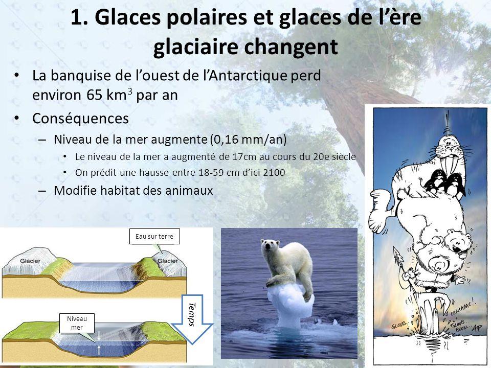 1. Glaces polaires et glaces de l'ère glaciaire changent La banquise de l'ouest de l'Antarctique perd environ 65 km 3 par an Conséquences – Niveau de