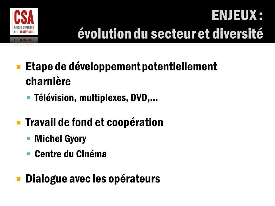  Etape de développement potentiellement charnière  Télévision, multiplexes, DVD,…  Travail de fond et coopération  Michel Gyory  Centre du Cinéma  Dialogue avec les opérateurs