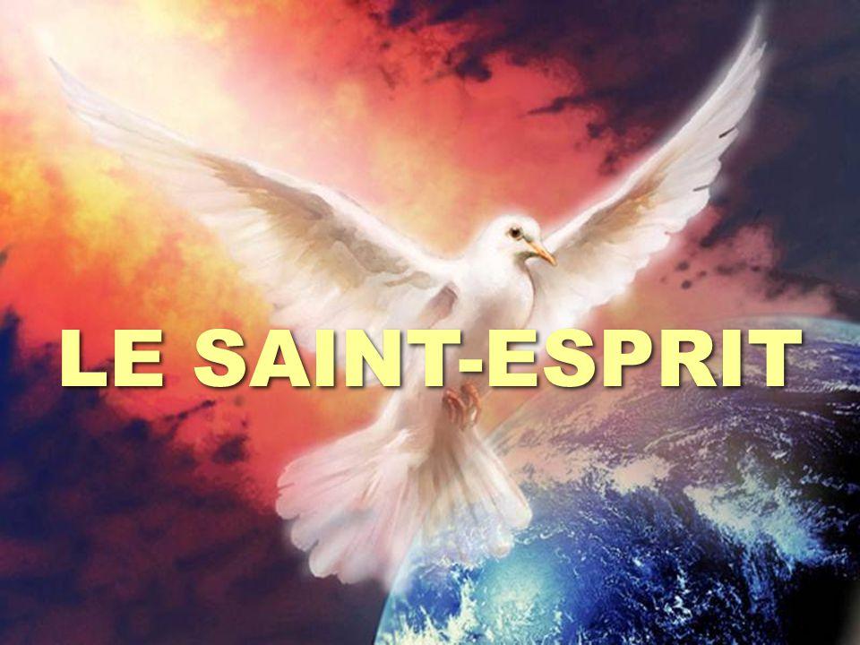 LE SAINT-ESPRIT EST-IL ÉTERNEL ? LE SAINT-ESPRIT EST-IL ÉTERNEL ? Hébreux 9:14