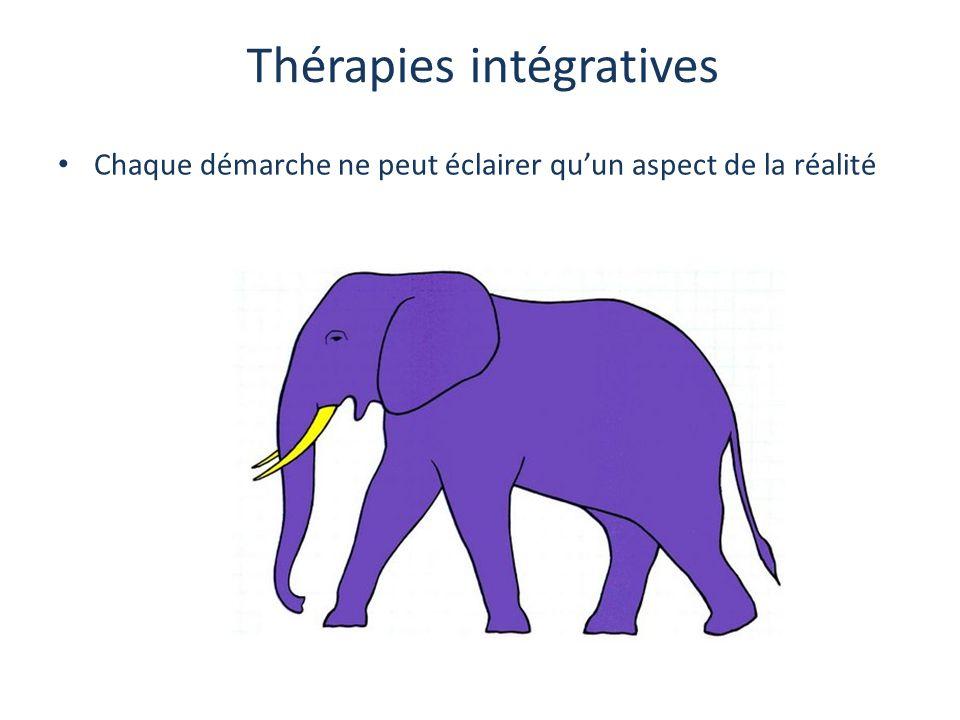 Thérapies intégratives Chaque démarche ne peut éclairer qu'un aspect de la réalité
