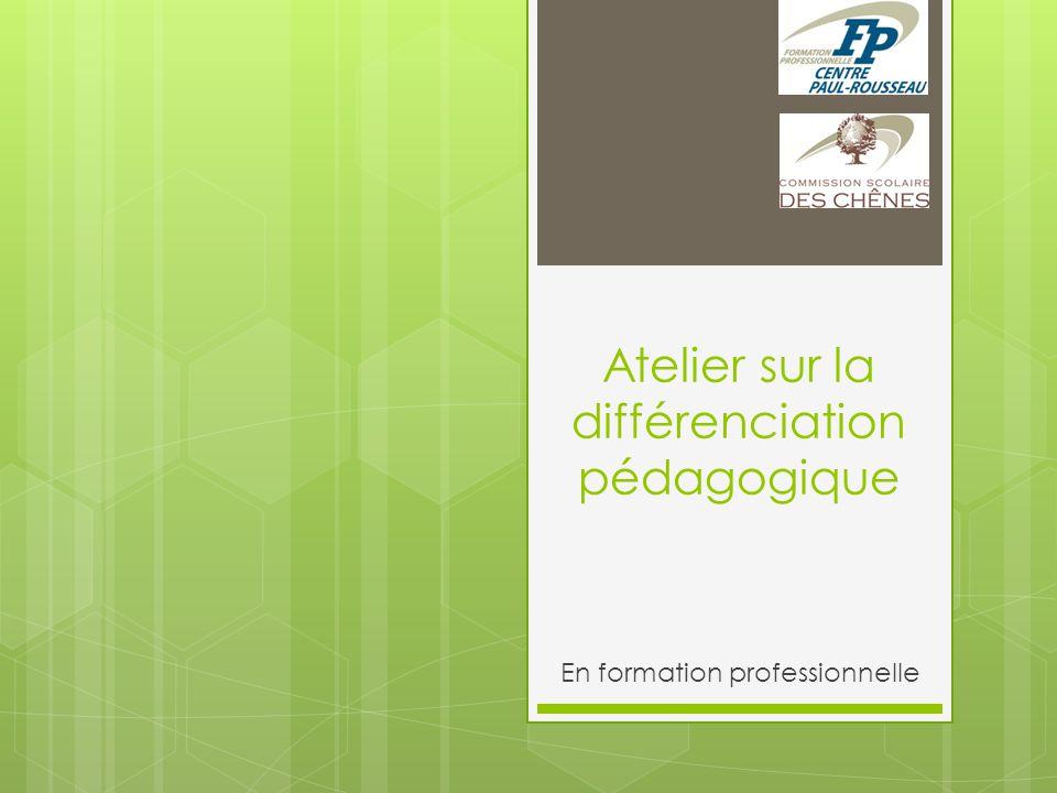 Atelier sur la différenciation pédagogique En formation professionnelle