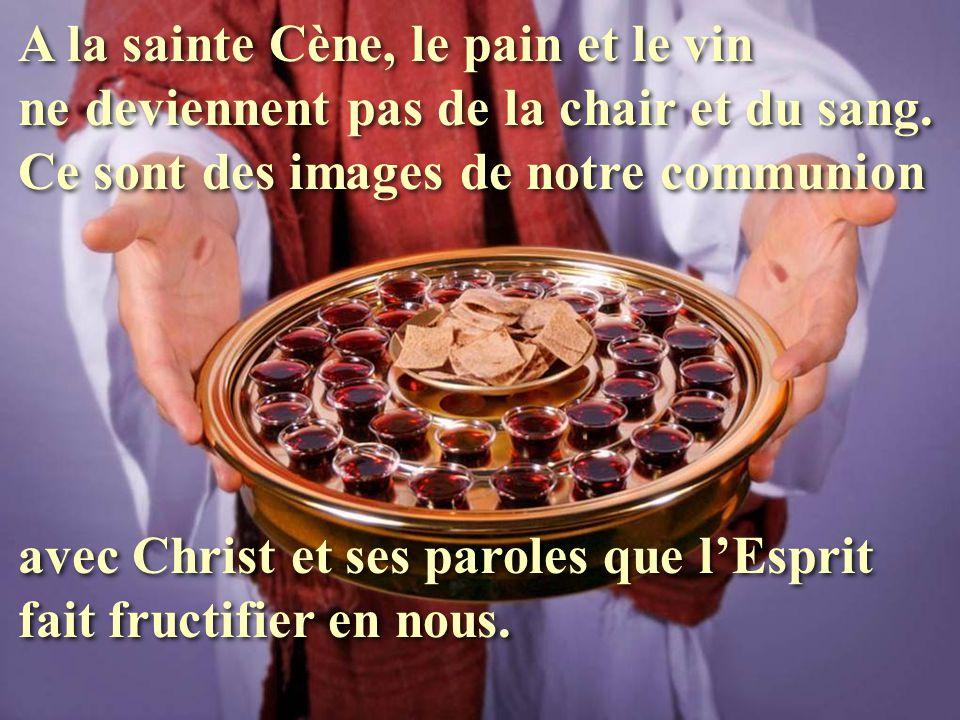 A la sainte Cène, le pain et le vin ne deviennent pas de la chair et du sang. Ce sont des images de notre communion avec Christ et ses paroles que l'E