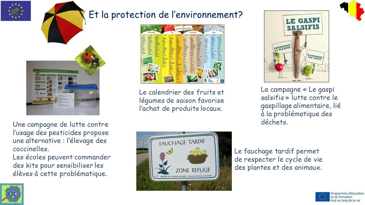 Et la protection de l'environnement? La campagne « Le gaspi salsifis » lutte contre le gaspillage alimentaire, lié à la problématique des déchets. Le