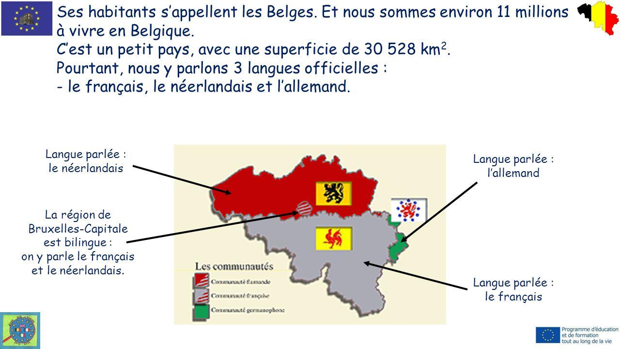 Ses habitants s'appellent les Belges. Et nous sommes environ 11 millions à vivre en Belgique. C'est un petit pays, avec une superficie de 30 528 km 2.