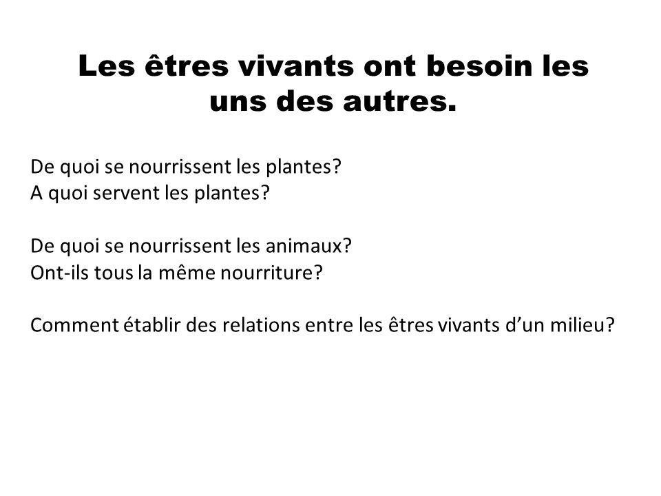Les êtres vivants ont besoin les uns des autres. De quoi se nourrissent les plantes? A quoi servent les plantes? De quoi se nourrissent les animaux? O