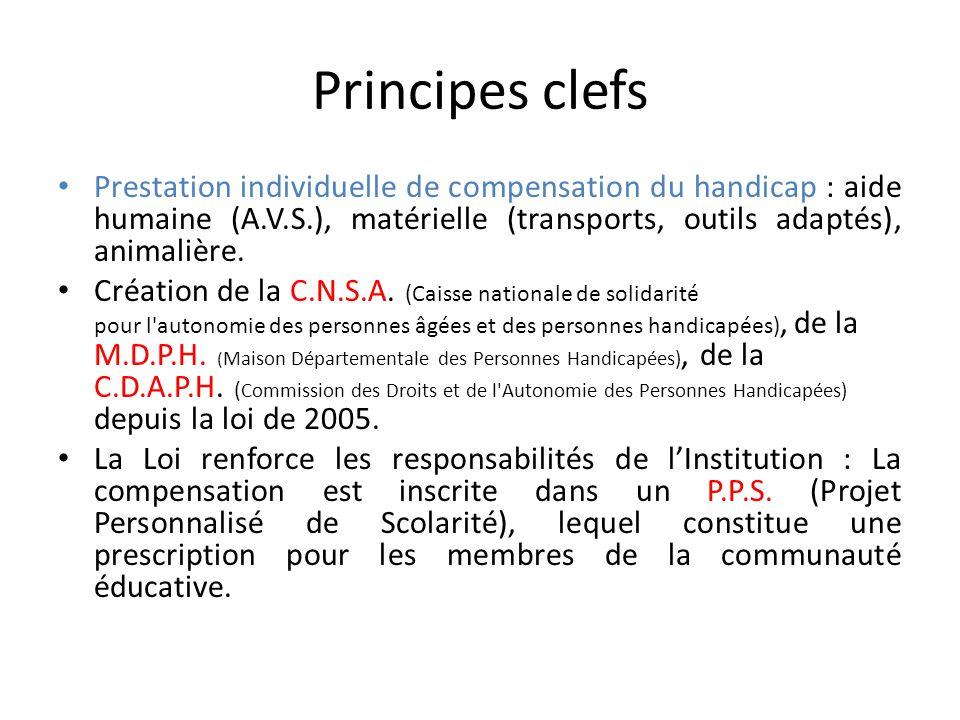 Principes clefs Prestation individuelle de compensation du handicap : aide humaine (A.V.S.), matérielle (transports, outils adaptés), animalière.