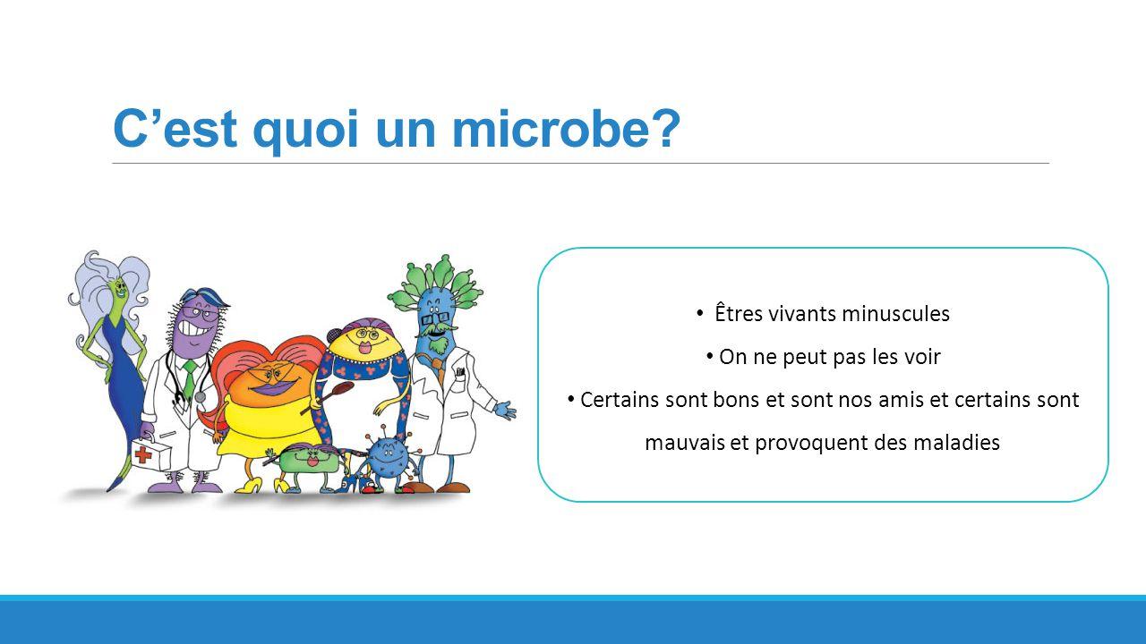 C'est quoi un microbe? Êtres vivants minuscules On ne peut pas les voir Certains sont bons et sont nos amis et certains sont mauvais et provoquent des