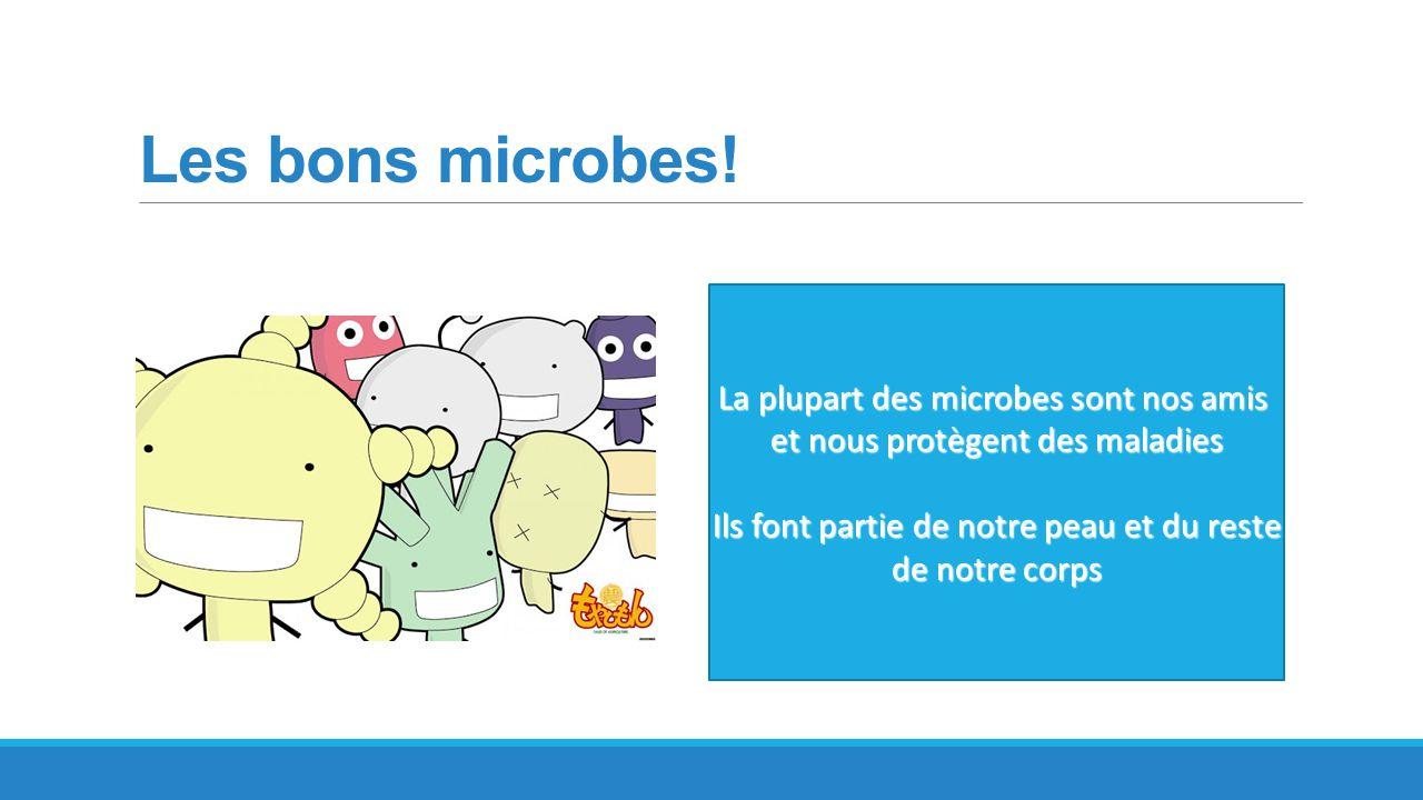 Les bons microbes! La plupart des microbes sont nos amis et nous protègent des maladies Ils font partie de notre peau et du reste de notre corps