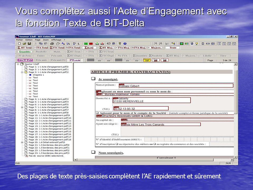 Vous complétez aussi l'Acte d'Engagement avec la fonction Texte de BIT-Delta Des plages de texte près-saisies complètent l'AE rapidement et sûrement
