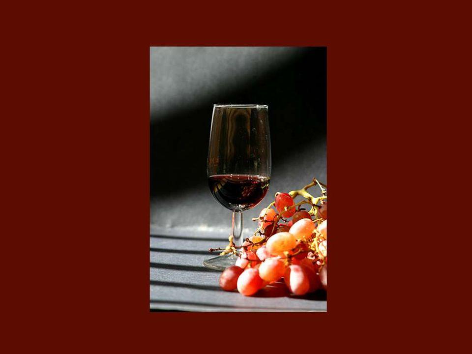 Je suis entrée dans le monde du vin sans autre formation professionnelle qu'une gourmandise certaine des bonnes bouteilles! Colette