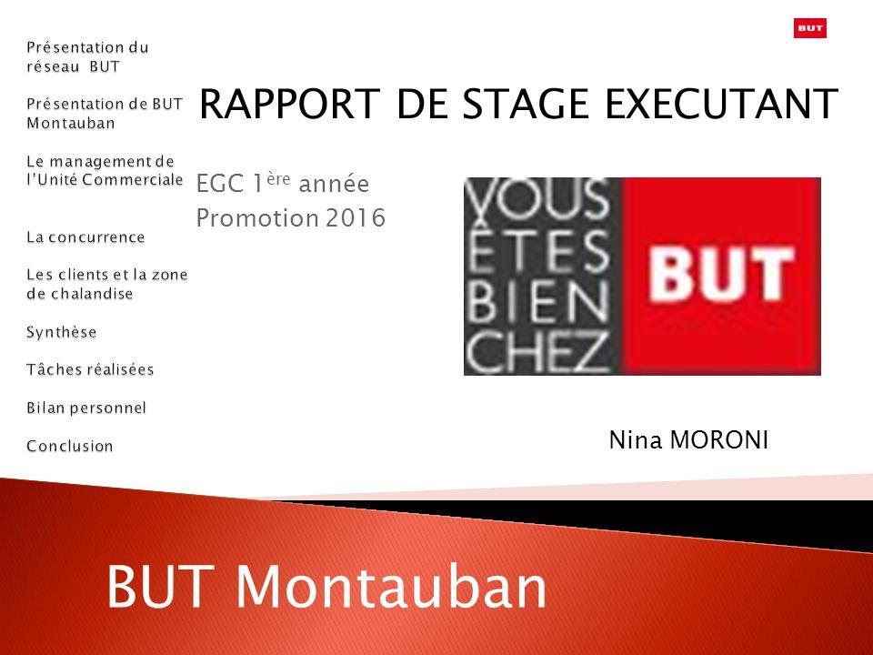 RAPPORT DE STAGE EXECUTANT EGC 1 ère année Promotion 2016 Nina MORONI BUT Montauban