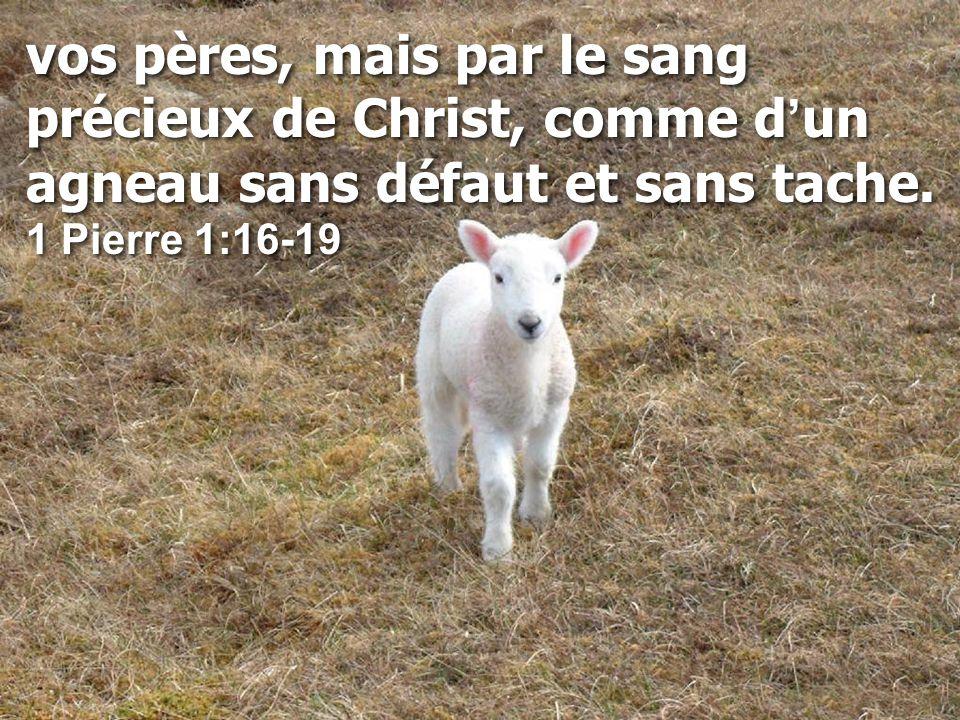 vos pères, mais par le sang précieux de Christ, comme d ' un agneau sans défaut et sans tache.
