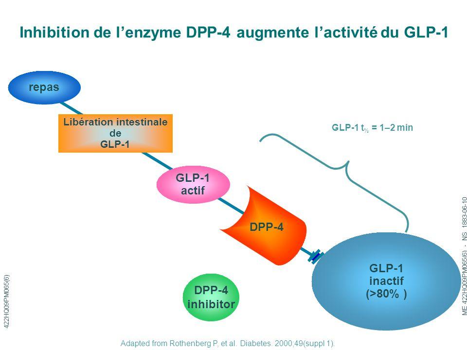 Adapted from Rothenberg P, et al. Diabetes. 2000;49(suppl 1). Inhibition de l'enzyme DPP-4 augmente l'activité du GLP-1 GLP-1 inactif (>80% ) GLP-1 ac