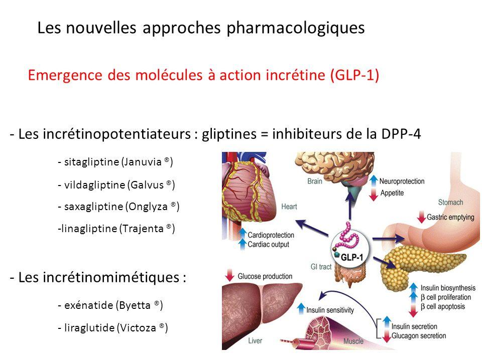 Les nouvelles approches pharmacologiques Emergence des molécules à action incrétine (GLP-1) - Les incrétinopotentiateurs : gliptines = inhibiteurs de la DPP-4 - sitagliptine (Januvia ®) - vildagliptine (Galvus ®) - saxagliptine (Onglyza ®) -linagliptine (Trajenta ®) - Les incrétinomimétiques : - exénatide (Byetta ®) - liraglutide (Victoza ®)
