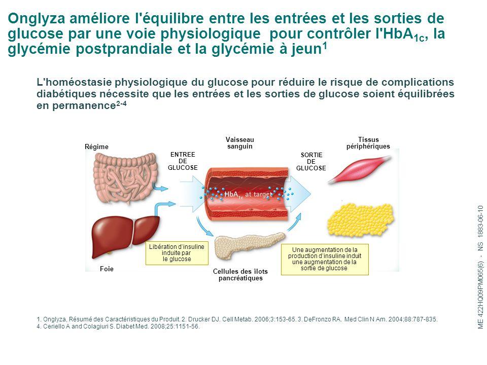 Onglyza améliore l'équilibre entre les entrées et les sorties de glucose par une voie physiologique pour contrôler l'HbA 1c, la glycémie postprandiale