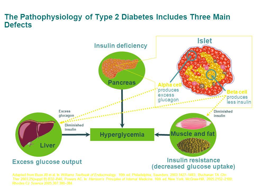 Saxaglyptine, nouvel inhibiteur DPP4 augmente les taux de GLP-1 et de GIP, diminuant ainsi les taux de glucagon et augmentant la sécrétion d insuline 1 Taux de glucose, d insuline et de glucagon pendant une HGPO* au départ et à la semaine 24 avec Onglyza 5 mg 2-3 Cellules β Cellules  mg/dl 100 150 300 200 0 Temps (minutes) 250 50 0 mg/dl 20 30 70 40 Temps (minutes) 50 10 0 4080120160 60 04080120160 GlucoseInsuline mg/dl 40 60 120 80 Temps (minutes) 100 20 0 04080120160 Glucagon Valeurs initiales Semaine 24 1.
