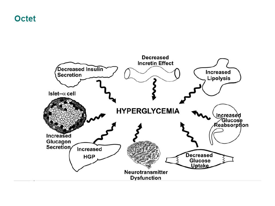 Conclusions Saxagliptin –Action efficace sur les 3 paramètres glycémiques (triade) et meilleur contrôle de l'HbA1c 3-4 –Maintien du contrôle de l'HbA1c dans le temps 2 –A un profil de sécurité et de tolérabilité favorable (faible risque d hypoglycémie; pas d'incidence apparente sur le poids) 1 –Simplicité au quotidien: 1 prise par jour, n'importe quand, pendant ou en dehors des repas 1 –Dans une méta-analyse d'études cliniques en phase 2/3 (n=3356), Onglyza n'était pas associé à un risque augmenté d'évènements cardiovasculaires.