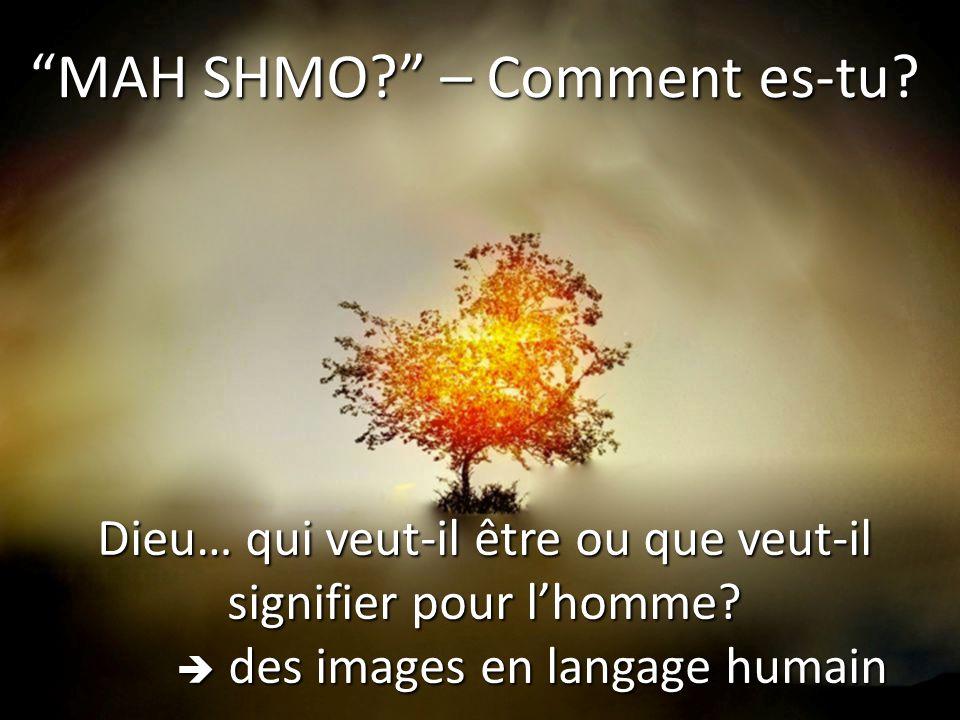"""""""MAH SHMO?"""" – Comment es-tu? Dieu… qui veut-il être ou que veut-il signifier pour l'homme?  des images en langage humain"""