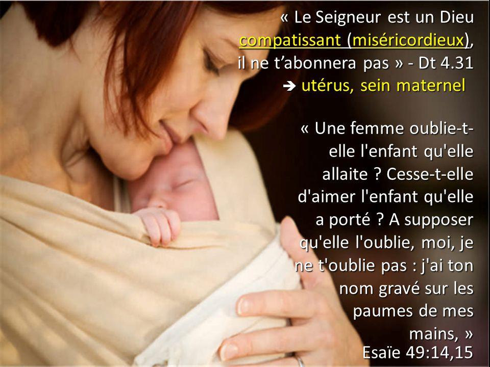 « Le Seigneur est un Dieu compatissant (miséricordieux), il ne t'abonnera pas » - Dt 4.31  utérus, sein maternel  utérus, sein maternel « Une femme
