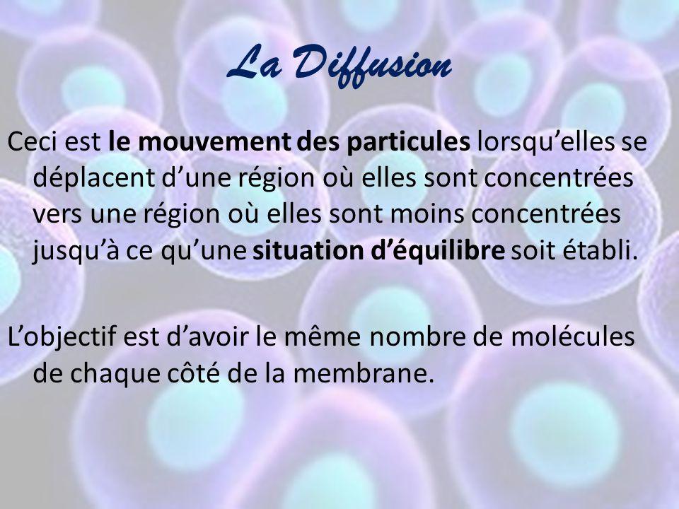 La Diffusion Ceci est le mouvement des particules lorsqu'elles se déplacent d'une région où elles sont concentrées vers une région où elles sont moins