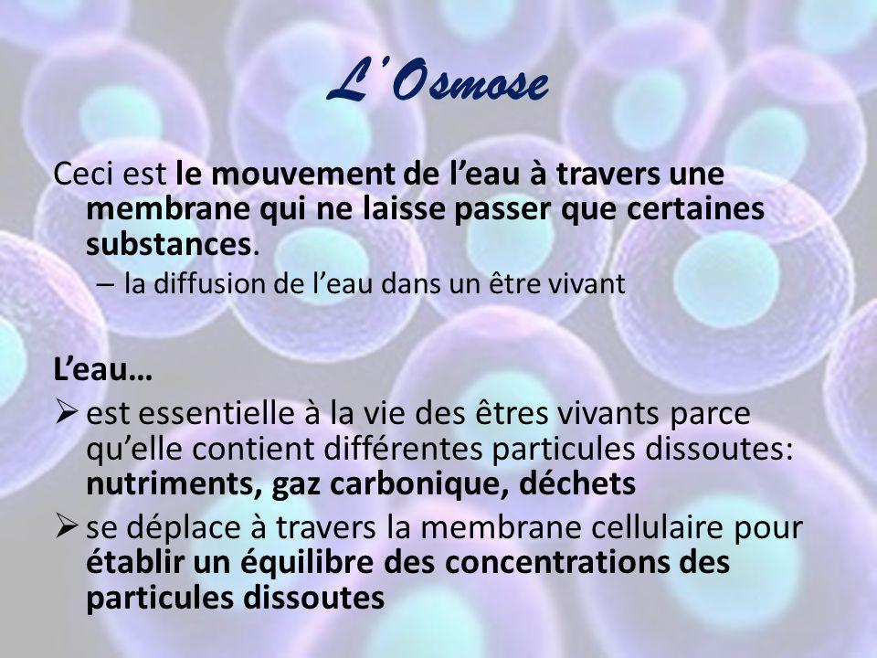 L'Osmose Ceci est le mouvement de l'eau à travers une membrane qui ne laisse passer que certaines substances. – la diffusion de l'eau dans un être viv